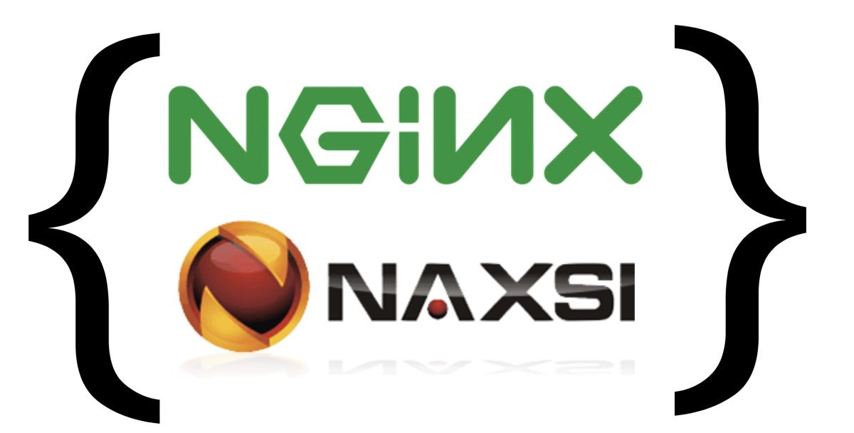 Nginx Anti-XSS & SQL Injection или просто NAXSI